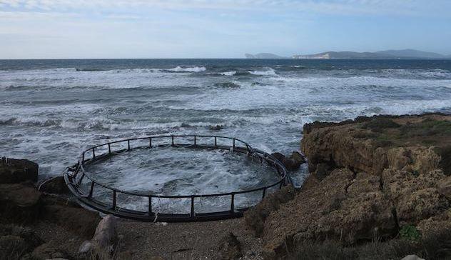 Maltempo mareggiata spazza via una gabbia allevamento for Allevamento pesci