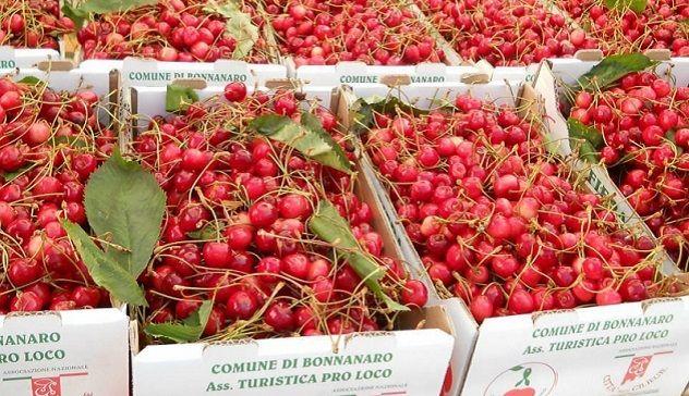 Bonnanaro e la Fiera delle ciliegie: il Comune parteciperà all'avviso regionale per i grandi eventi
