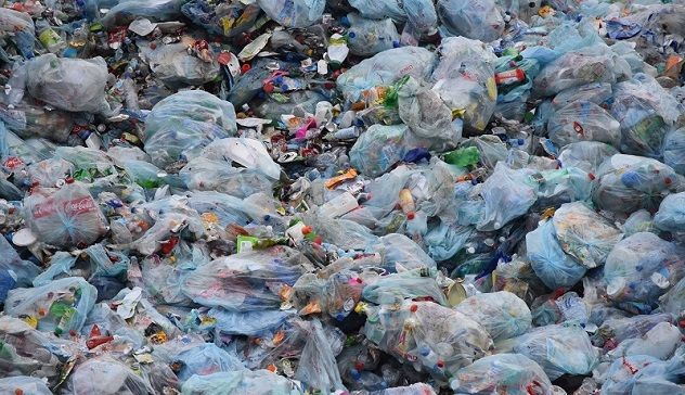 """""""Stintino Plastic free"""": una campagna per la promozione del rispetto dell'ambiente"""