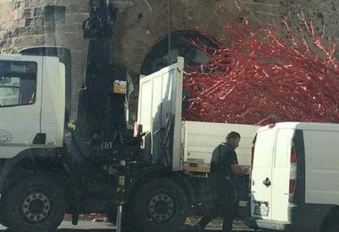 Il Comune rimuove l'albero di Natale in corallo posizionato in piazza Porta Terra